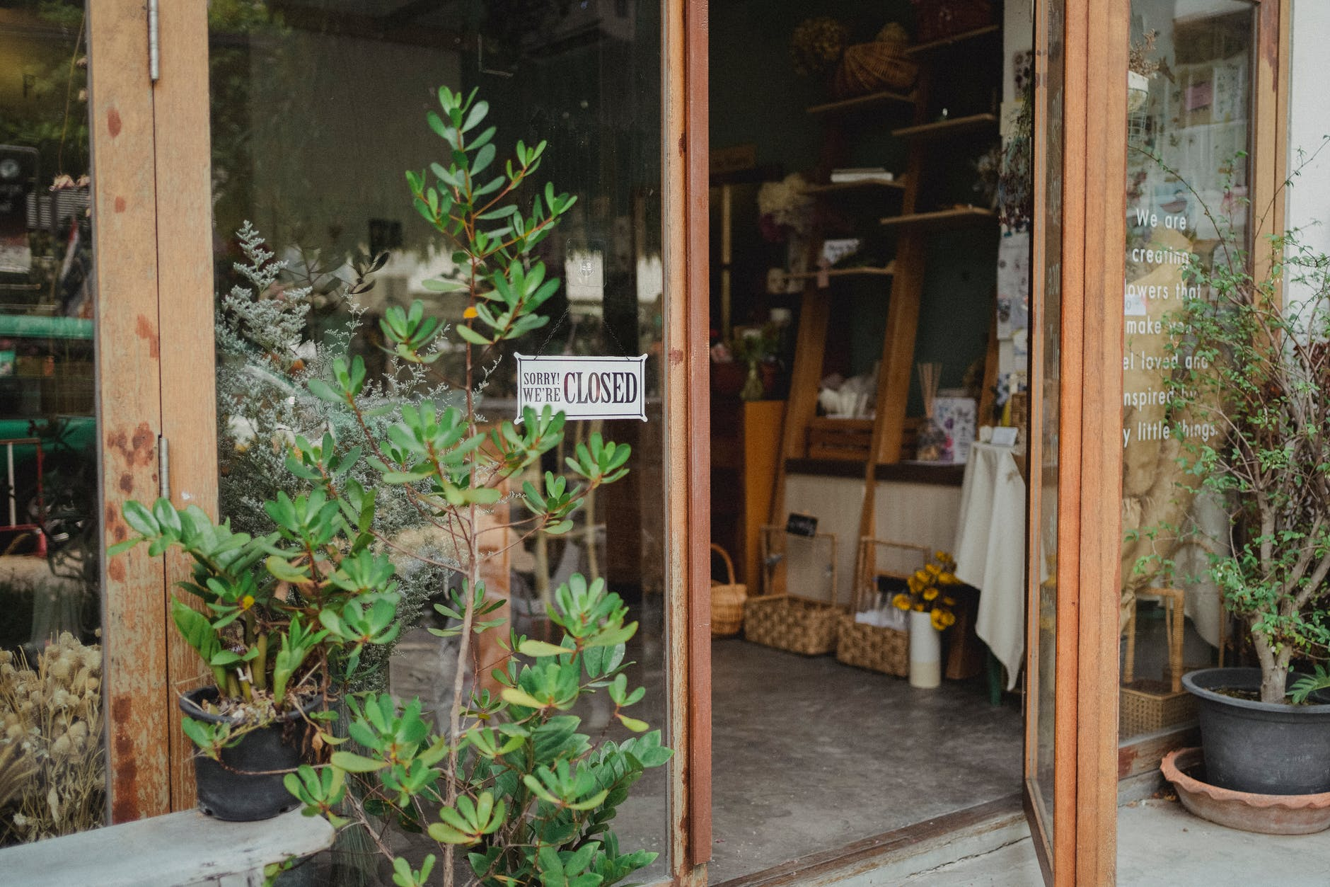 entrance of modern floristry shop with glass walls